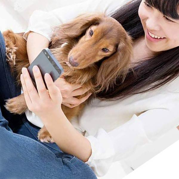Pet Health Care with IoT